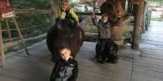 Zoo-Lešná-2019-24