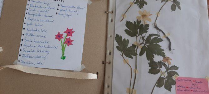 Už jste někdy vyráběli herbář?