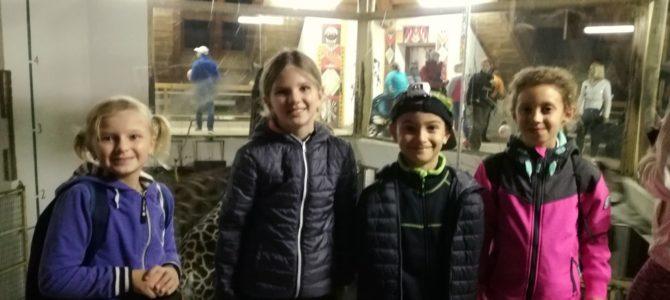 Tradiční návštěva večerní Zoo vLešné